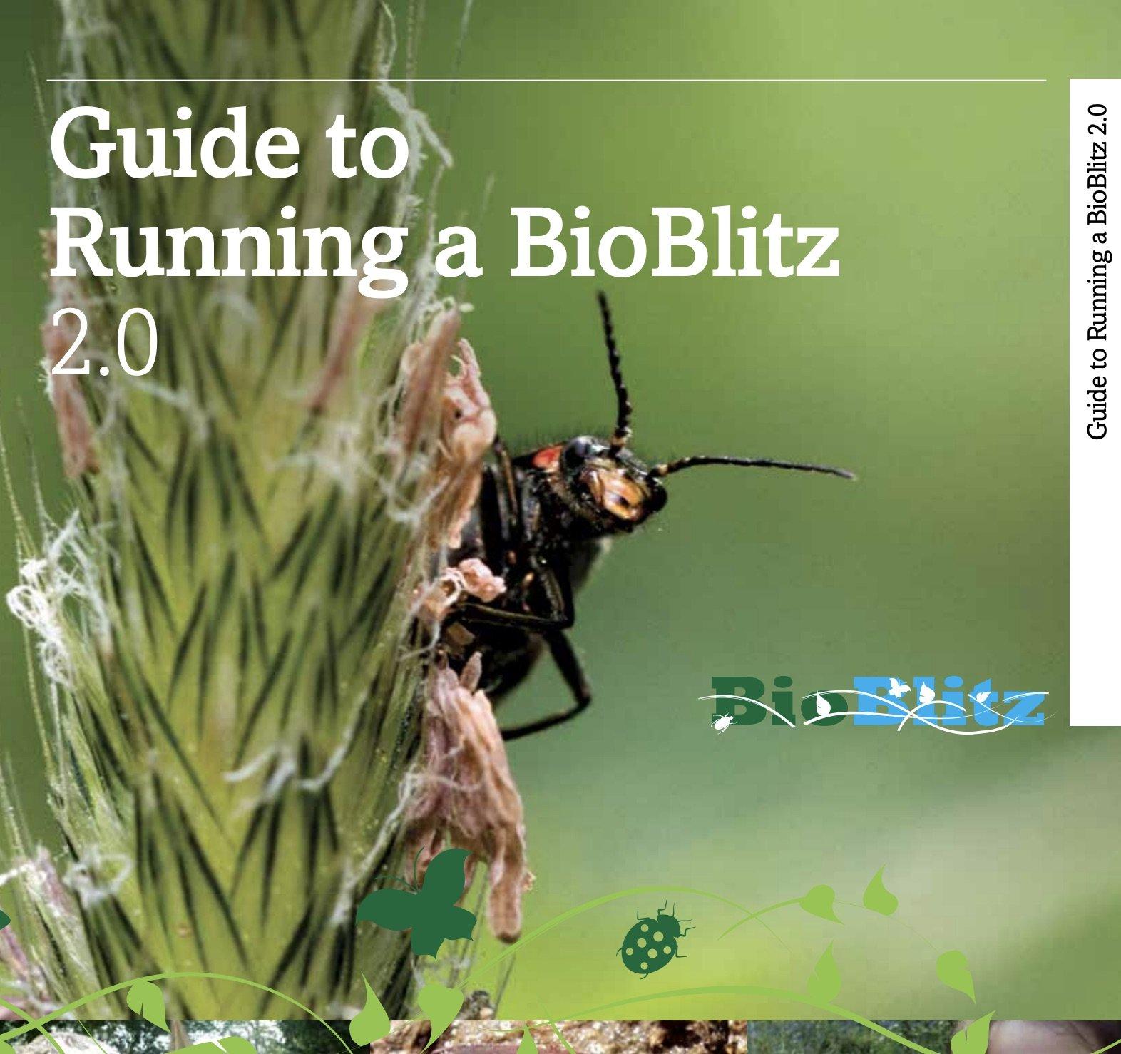 BioBlitz Guide