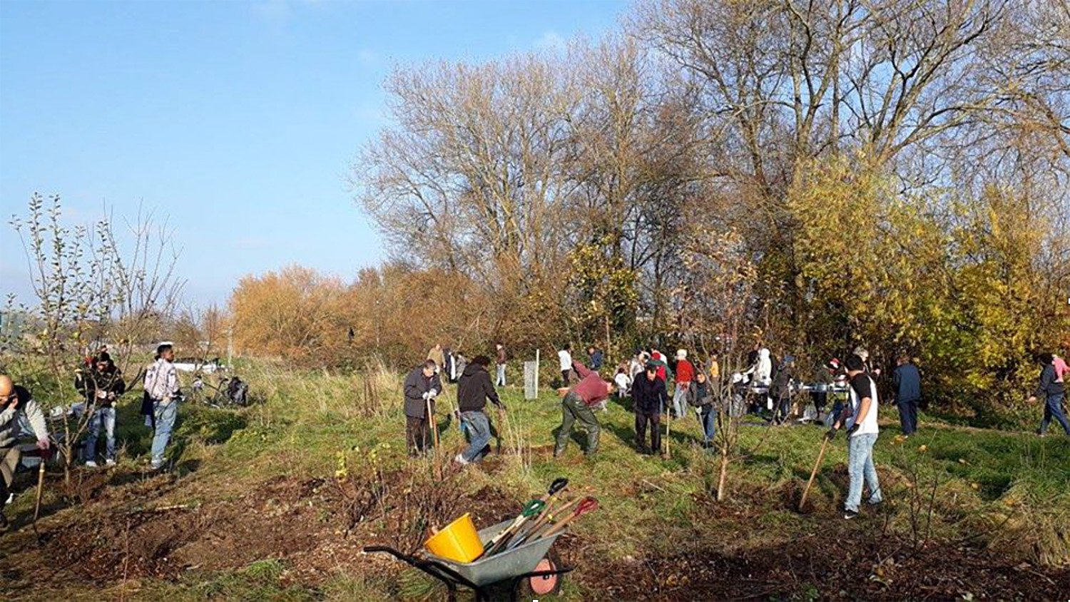Creating a network of community orchards and forest gardens – Fruit and Nut Village, Stirchley, Birmingham
